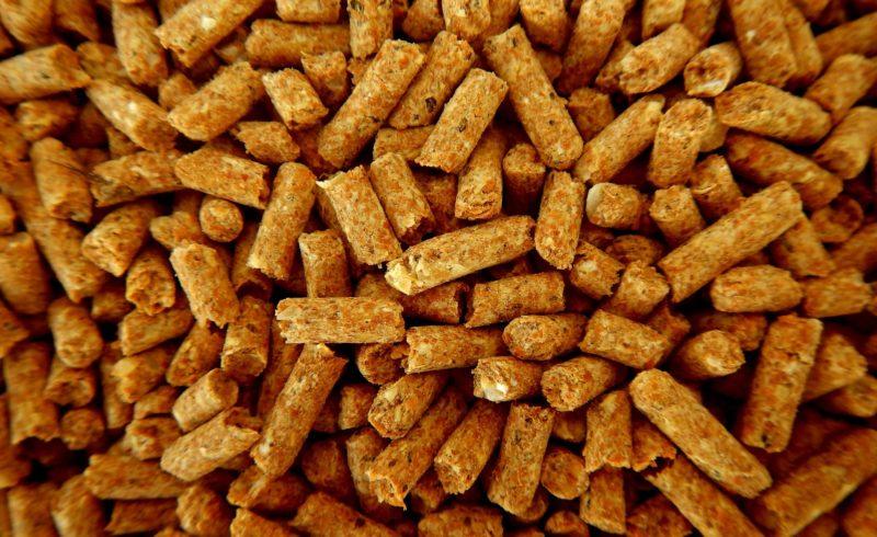 Cosa si può bruciare nella stufa a pellet